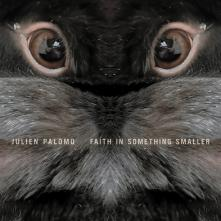 Faith in something smaller Cover