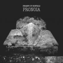 Pronoia Cover