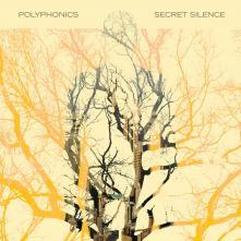 Secret Silence Cover