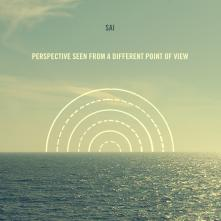 Perspective seen from a different point of view Cover